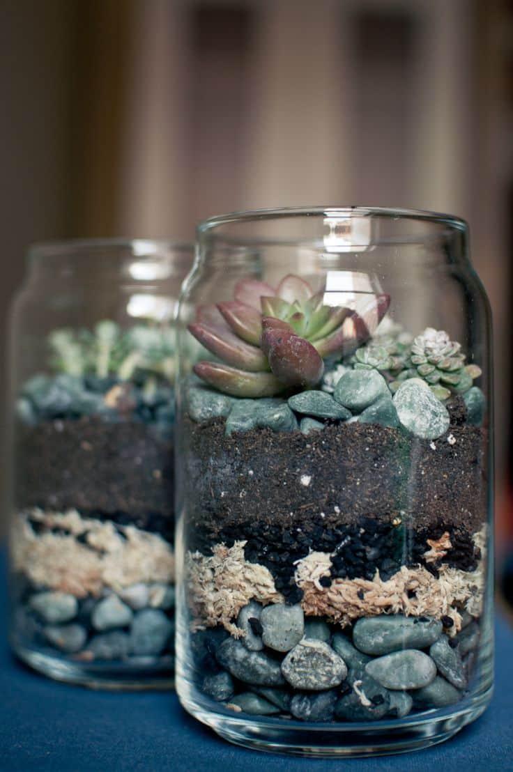 como-fazer-um-terrario-em-casa