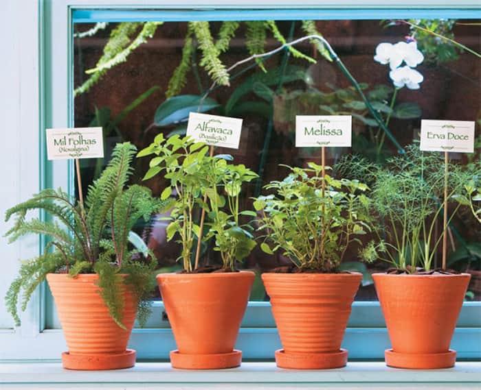 jardins-pequenos-casa